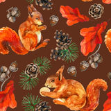 Watercolor forest wildlife seamless pattern. Watercolor forest seamless pattern. Hand painted squirrels, acorn, cone, oak leaves and pine branches on background Stock Photography
