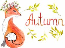 Watercolor fox anf leaves. And text - autumn Royalty Free Stock Images