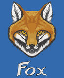 Watercolor fox face on a blue background. With inscription fox. Vector hand drawn illustration Stock Photo