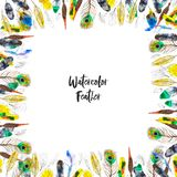 Watercolor frame with colorful feathers on white background stock image