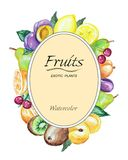 Watercolor frame of fruits Stock Photo