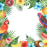 Watercolor frame of the tropical plants and birds. Stock Images