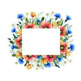 Watercolor frame with wildflowers. Poppies, cornflower, chamomile. Hand drawn illustration stock photo