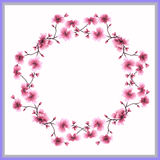 Watercolor frame a wreath of pink flowers on a white background royalty free stock image