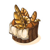 Watercolor Fresh Bread Basket stock illustration