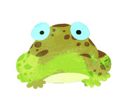 Watercolor frog isolated on white background Royalty Free Stock Image