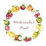 Watercolor fruit Stock Photos