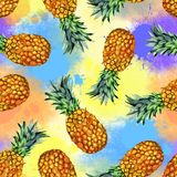 Watercolor fruit, hand painted pineapple illustration royalty free stock photography