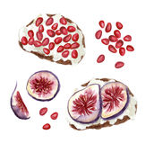 Watercolor fruit toasts. Sweet toasts with figs and pomegranate seeds and cream cheese or butter, watercolor hand drawn illustration royalty free illustration