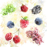 Watercolor Fruits Background Royalty Free Stock Photos