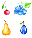 Watercolor fruits and berries Stock Photos
