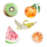 Watercolor fruits set. Watercolor fruit set of watermelon, orange, kiwi and banana royalty free illustration