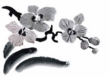 Watercolor garden flowers isolated on white background, Japanese style vector illustration Royalty Free Stock Photo