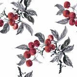 Watercolor garden rowan plant seamless pattern Stock Image