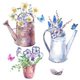 Watercolor garden set of spring flowers Royalty Free Stock Photos
