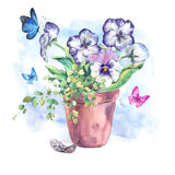 Watercolor Garden Spring bouquet in flower pots Stock Photos