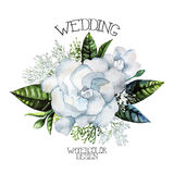 Watercolor gardenia and gypsophila vignette Stock Photo