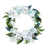 Watercolor gardenia and gypsophila wreath Royalty Free Stock Images