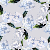Watercolor gardenia pattern Royalty Free Stock Images