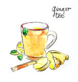 Watercolor ginger tea Stock Photos
