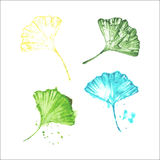 Watercolor ginkgo leaves. Watercolor colorful ginkgo leaves set royalty free illustration