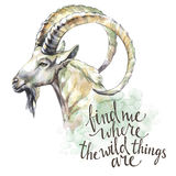 Watercolor goat with handwritten inspiration phrase. Mountain animal. Wildlife art illustration. Can be printed on T vector illustration