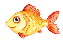 Watercolor gold fish. Hand-drawn cartoon illustration. Isolated on white Royalty Free Stock Photography