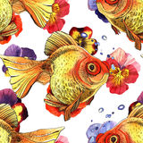 Watercolor golden fish. Hand painted drawing of outline isolated on white background Stock Images
