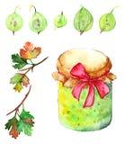 Watercolor gooseberry berry jam jar bow set  Royalty Free Stock Image