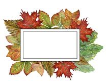 Watercolor gouache drawing colorful leaves branches set of autumn fall seasons arrangement wreath banner frame border hand painted vector illustration
