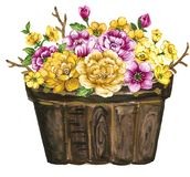 Watercolor gouache elegant vintage yellow and purple or violet f. Watercolor gouache elegant vintage flowerpot yellow and purple or violet flower vector illustration