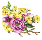Watercolor gouache elegant vintage yellow and purple or violet f. Watercolor gouache elegant vintage bouquet yellow and purple or violet flower royalty free illustration