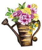 Watercolor gouache elegant vintage yellow and purple or violet f. Watercolor gouache elegant vintage watering pot yellow and purple or violet flower vector illustration