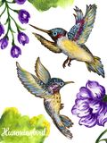 Watercolor gouache illustration flying hummingbird isolated on w. Hite background exotic, tropical, wild life hand paint vector illustration