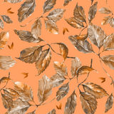 Watercolor grapes brown leaves seamless pattern. Seamless pattern with watercolor dry autumn wild grape brown leaves on orange royalty free illustration