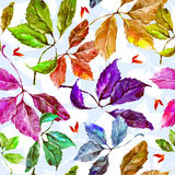 Watercolor grapes colorful leaves seamless pattern. Seamless pattern with watercolor dry autumn wild grape green, red, purple, blue and orange leaves on light vector illustration