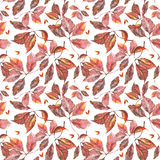 Watercolor grapes red leaves seamless pattern. Seamless pattern with watercolor dry autumn wild grape red leaves on white vector illustration