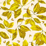 Watercolor grapes yellow leaves seamless pattern. Seamless pattern with watercolor dry autumn wild grape yellow leaves on beige background vector illustration