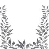 Watercolor graphite floral frame. Hand painted watercolor graphite floral frame isolated on white background. Natular ilustration for design and background royalty free illustration
