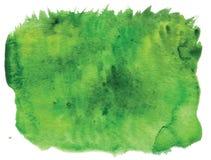 Watercolor grass Stock Photos
