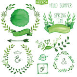 Watercolor Green brunches laurels wreath.Spring,summer decor set Royalty Free Stock Images