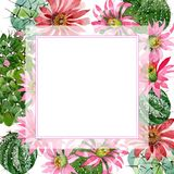 Watercolor green cactus with a pink flower. Floral botanical flower. Frame border ornament square. Aquarelle wildflower for background, texture, wrapper stock illustration