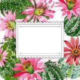 Watercolor green cactus with a pink flower. Floral botanical flower. Frame border ornament square. Aquarelle wildflower for background, texture, wrapper vector illustration