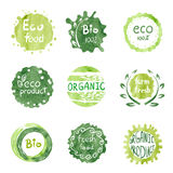 Watercolor green Eco food labels set. Stock Images