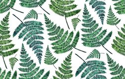 Watercolor green fern pattern. Summer botanical leaves background. Nature illustration Royalty Free Stock Photos