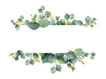 Watercolor green floral banner with silver dollar eucalyptus leaves and branches isolated on white background. Watercolor hand painted green floral banner with