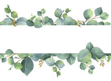 Watercolor green floral card with silver dollar eucalyptus leaves and branches isolated on white background. stock illustration