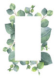 Watercolor green floral card with silver dollar eucalyptus leaves and branches isolated on white background. Watercolor hand painted green floral card with Royalty Free Stock Photography