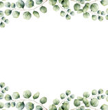Watercolor green floral frame card with silver dollar eucalyptus leaves. Hand painted border with branches and leaves of Royalty Free Stock Image