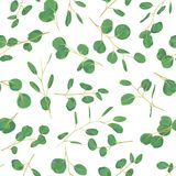 Watercolor green floral seamless pattern with eucalyptus round l stock illustration